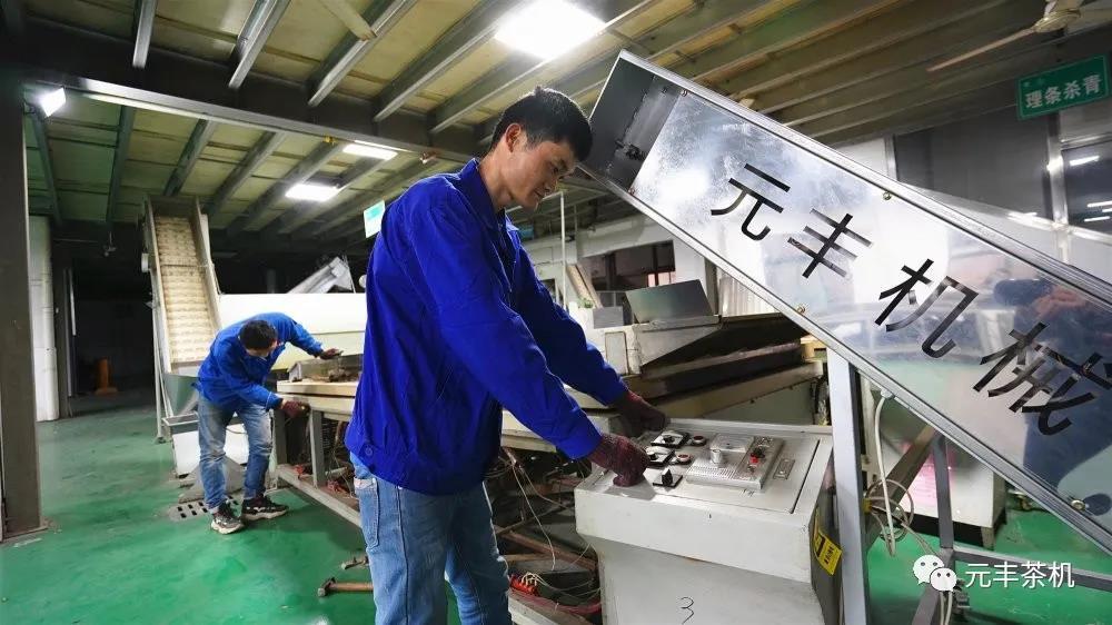 奋战茶季丨元丰茶叶机械奔跑在春光里